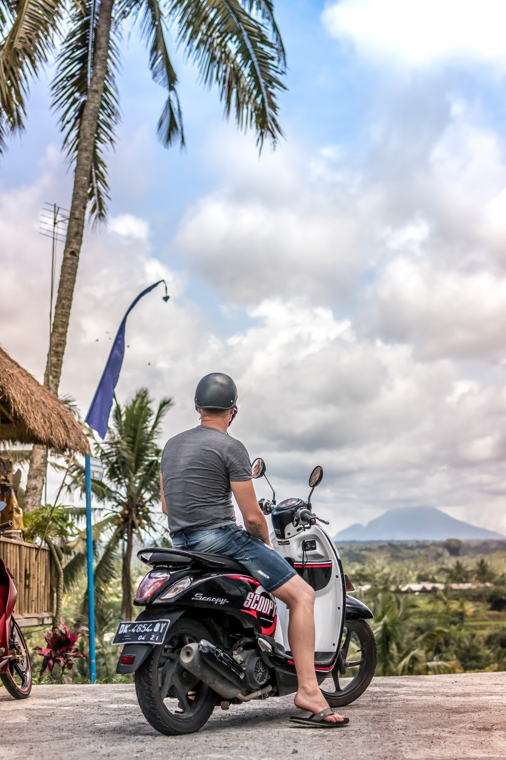 man sitting on motor scooter under coconut tree