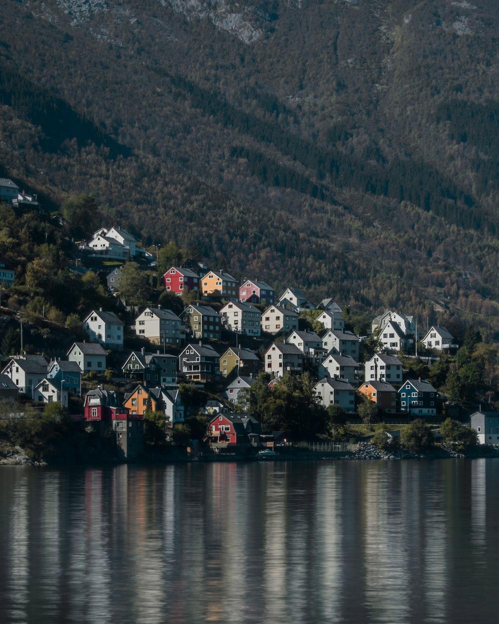 houses beside lake