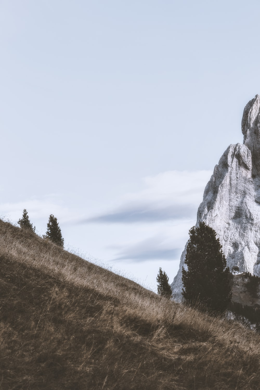 grey rock formation during daytime