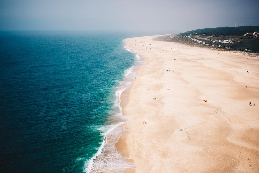 seashore photo during daytime