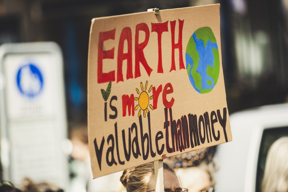 Earth is more valuable than money signage