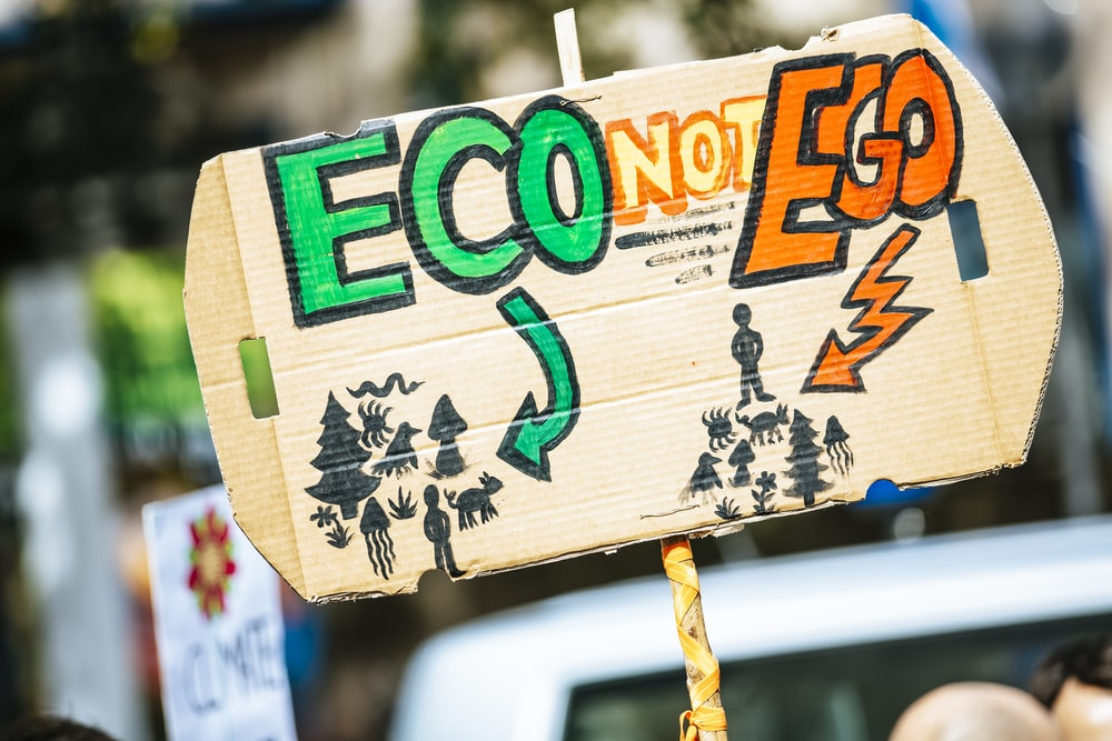 person holding Eco Not Ego signage