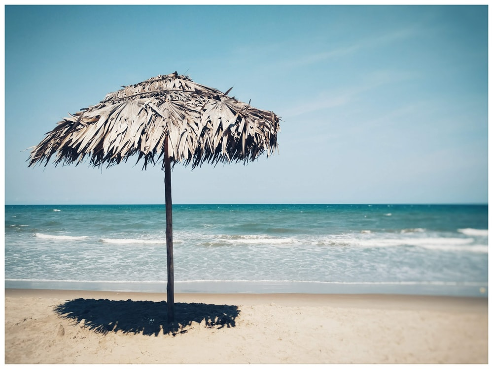 thatch parasol on seashore during day