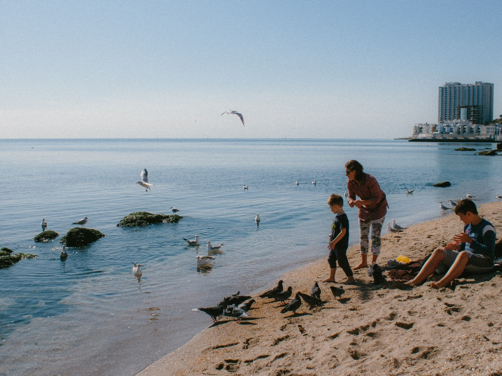 woman and two boys on seashore surrounded by birds