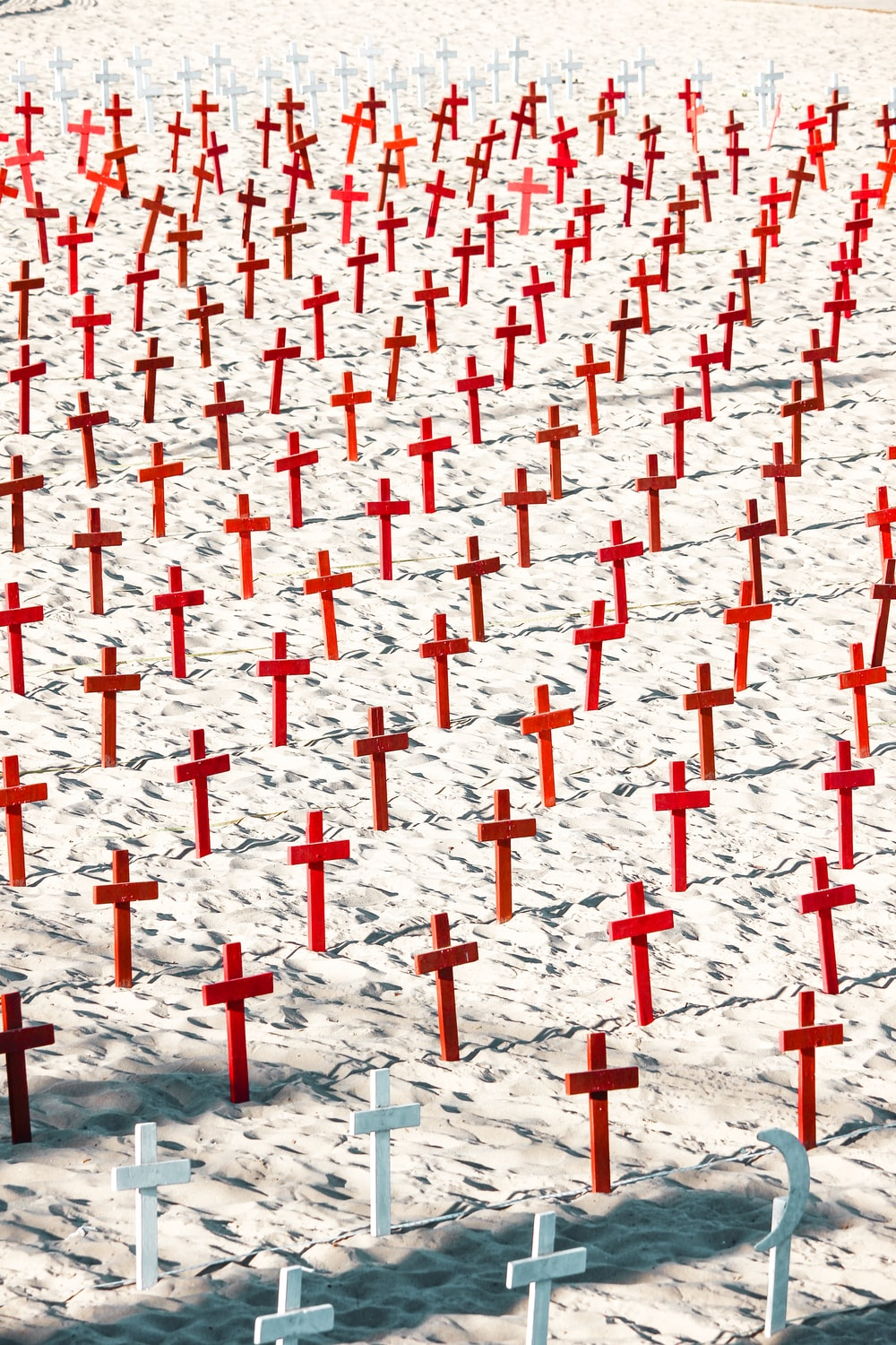 red and white cross lot