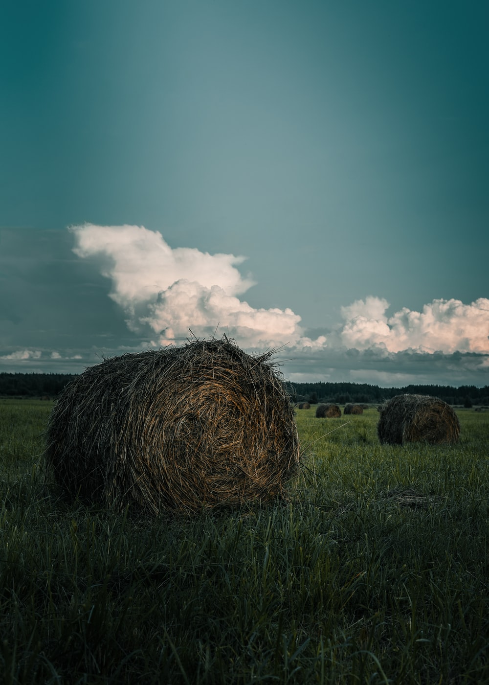 hay stack on grass field during daytime
