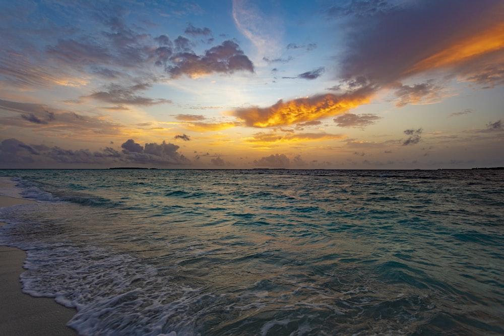 beach line during golden hour