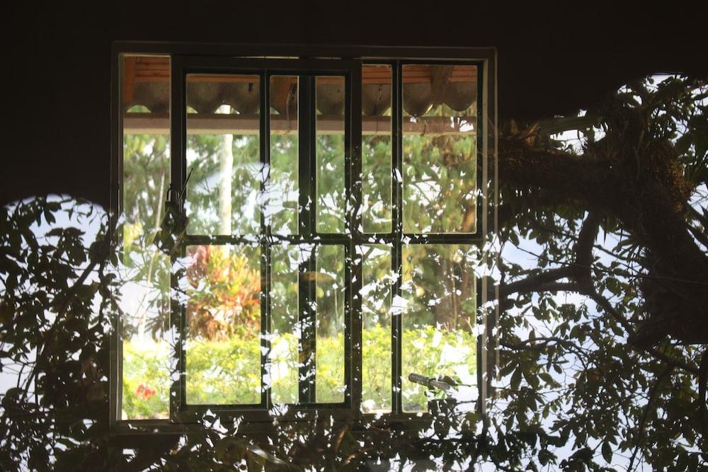 framed glass window