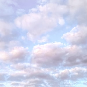 I had seen Renaissance paintings with skies filled with delicate pink clouds like these, but I thought they were artistic license until I saw them for myself one morning over my house. 2013