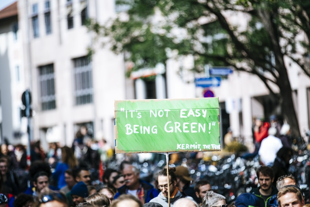 man holding a green board in a rally