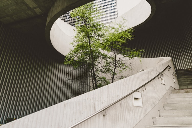 sustainable travel - museum with nature in it. tree in between concrete building