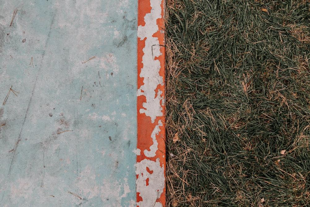 green grass beside gray concrete floor