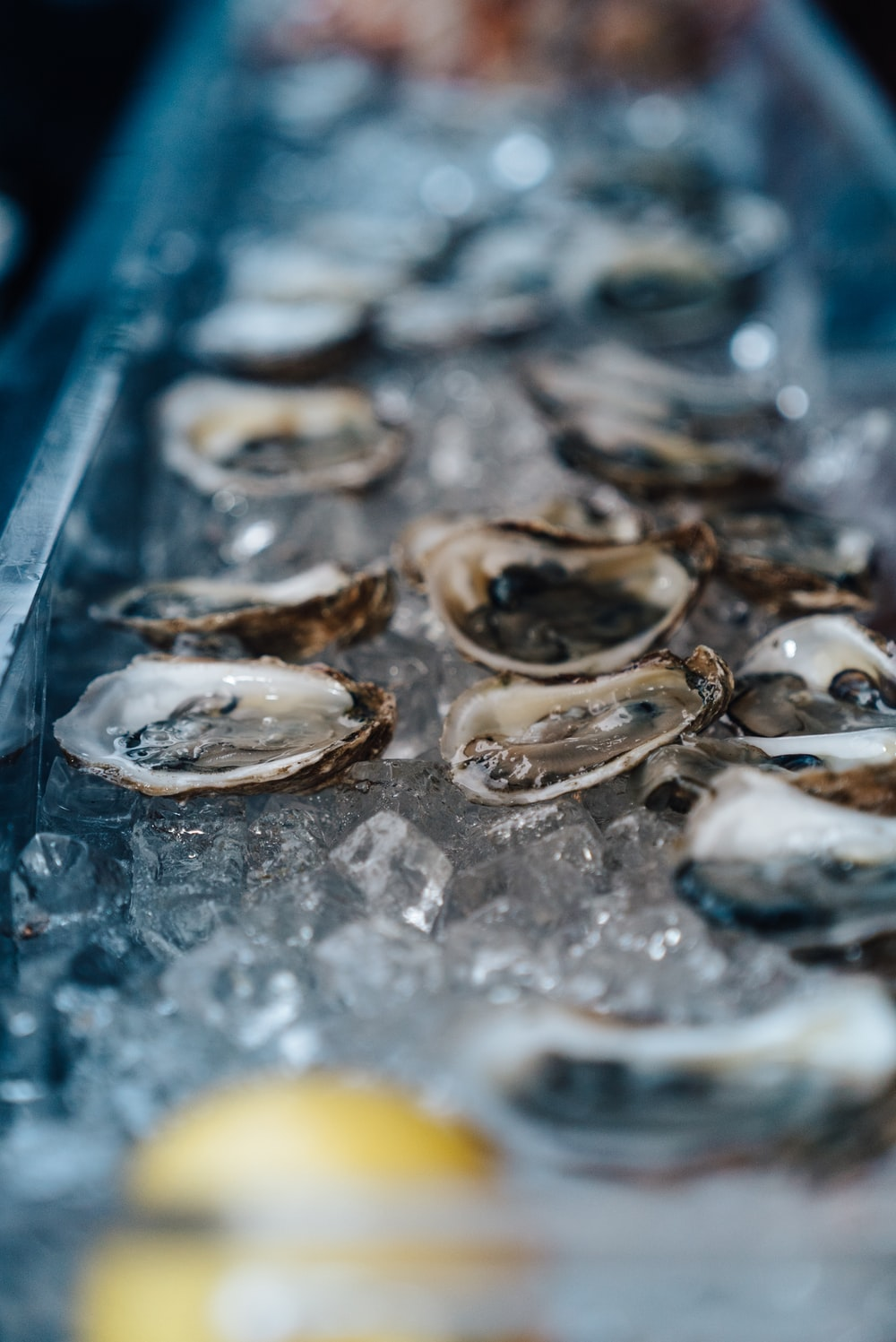 oysters on crushed ice