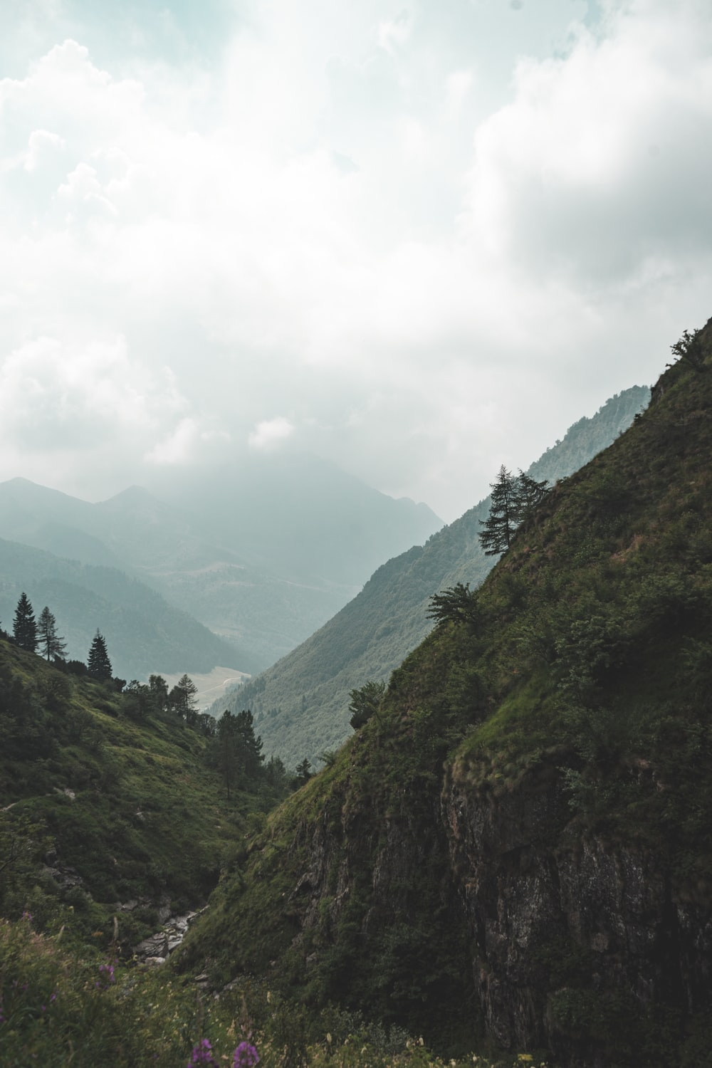 mountains covered with green leafed trees under white clouds