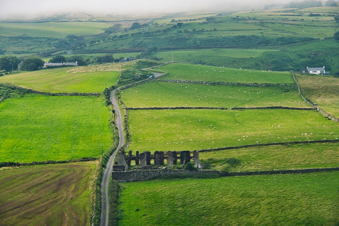 This view from the Torr Head shows in one picture the beauty of Northern Ireland – Green meadows, many sheep and castle ruins.