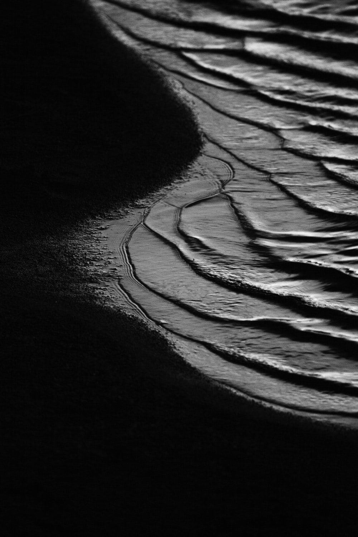 silhouette photo of seashore