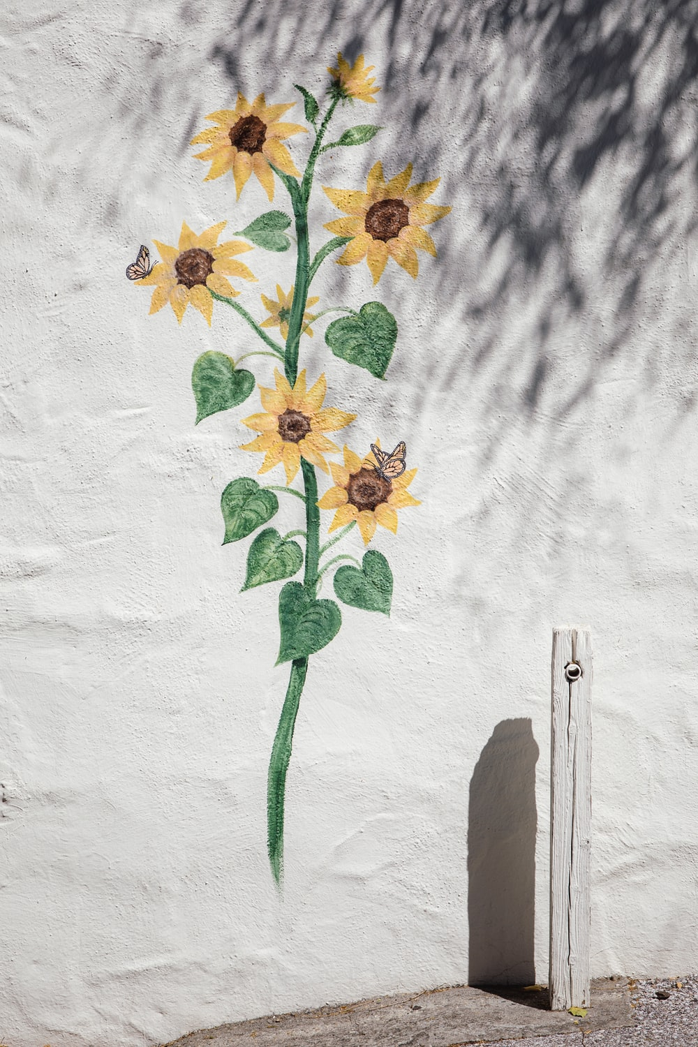 blooming yellow sunflower wall painting