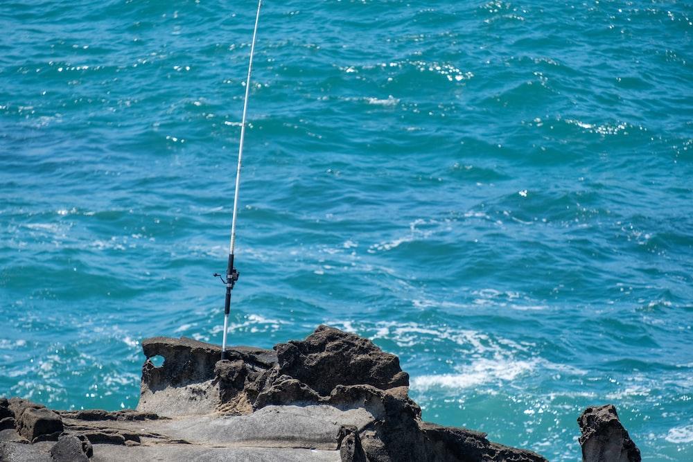 white fishing rod
