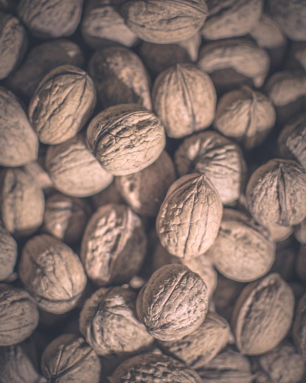 walnut lot