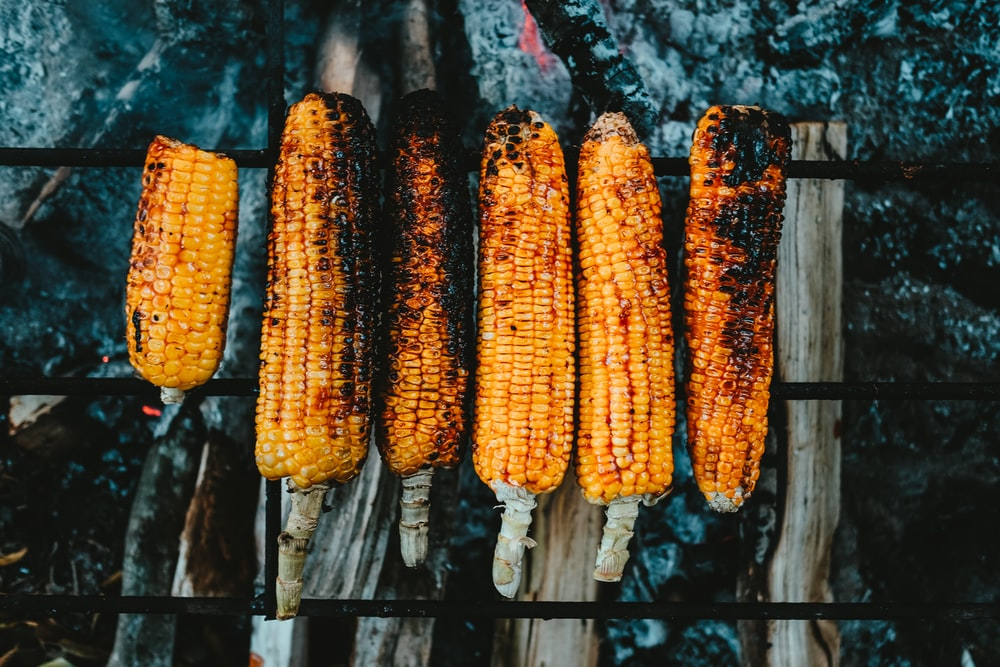 flat-lay photography of grilled corns