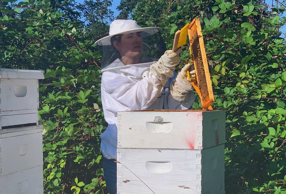 woman holding honey comb