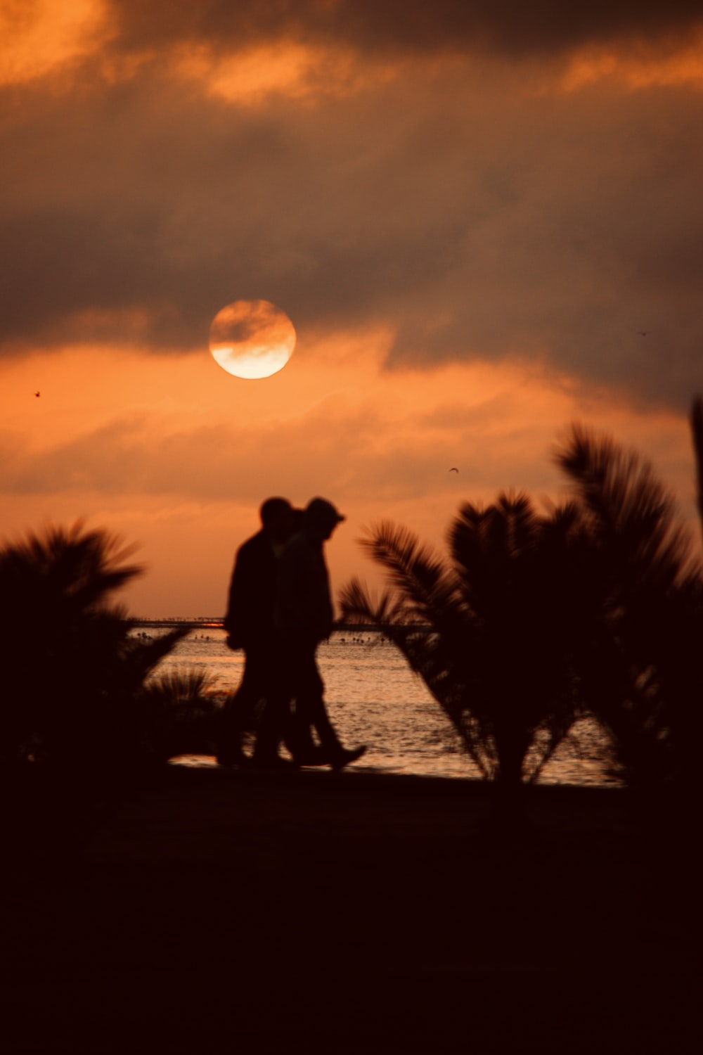 silhouette photography of two men walking by the seashore during golden hour