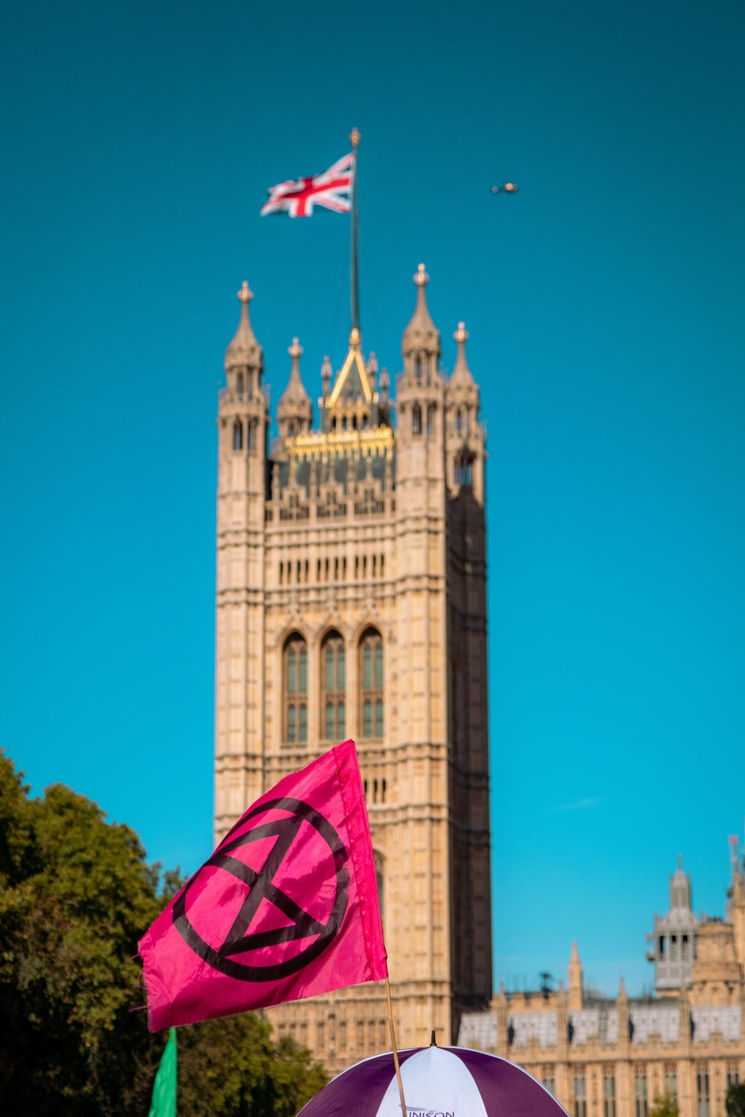 Extinction rebellion flag in front of Westminster and English flag, during a global strike for climate change.