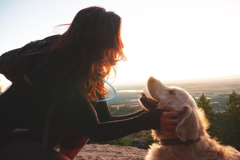 woman touching Labrador retriever