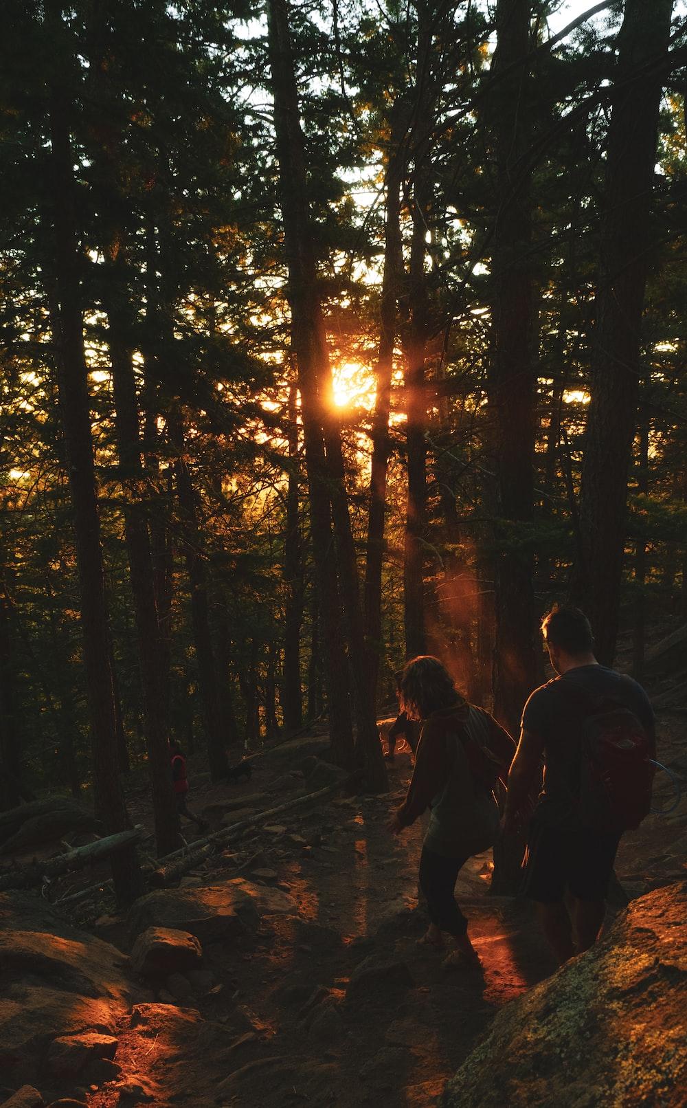 man and woman walking towards trees