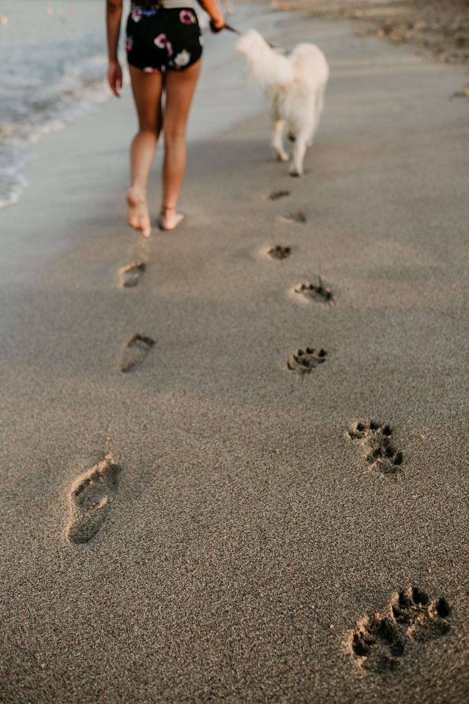 man and dog foot prints