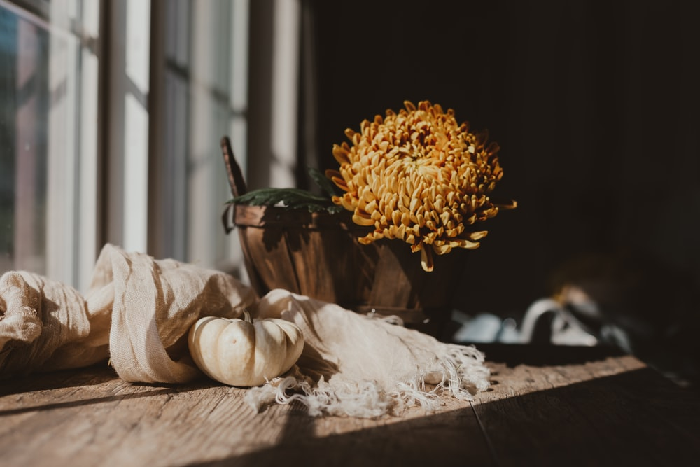Fall Scene Pictures Download Free Images On Unsplash