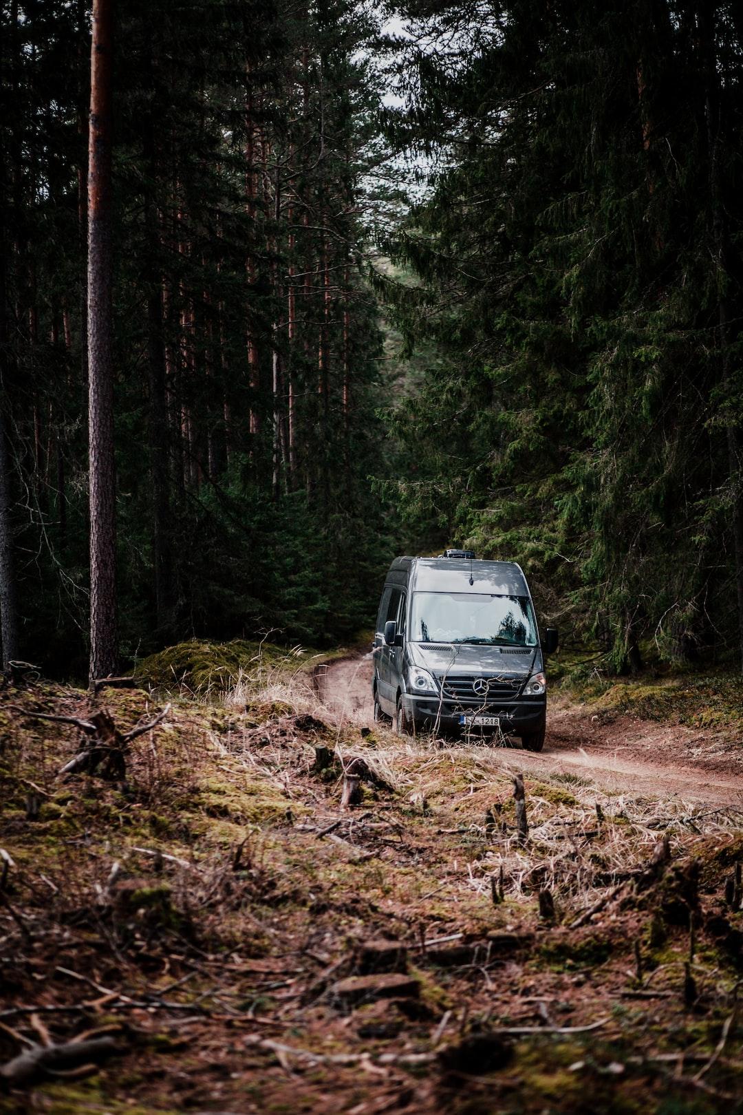 Sprinter van in to the woods