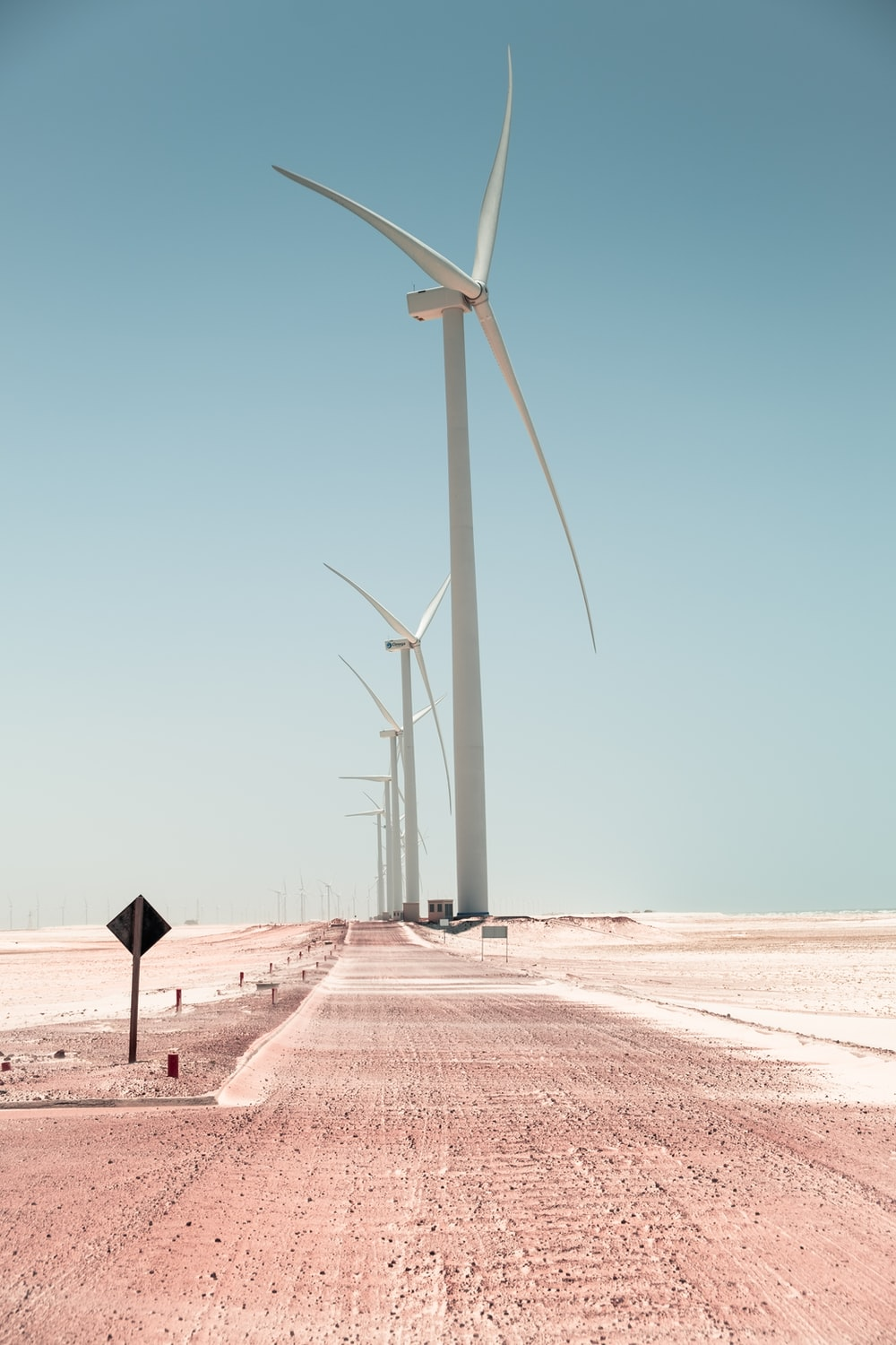 field with wind mills