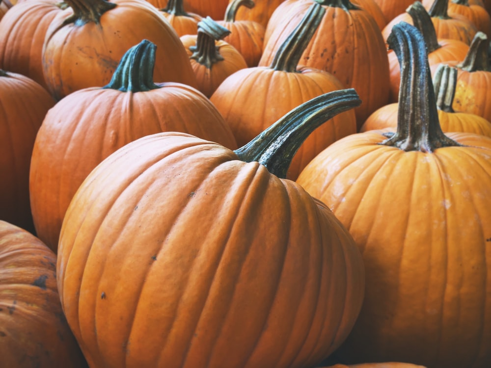 brown pumpkins