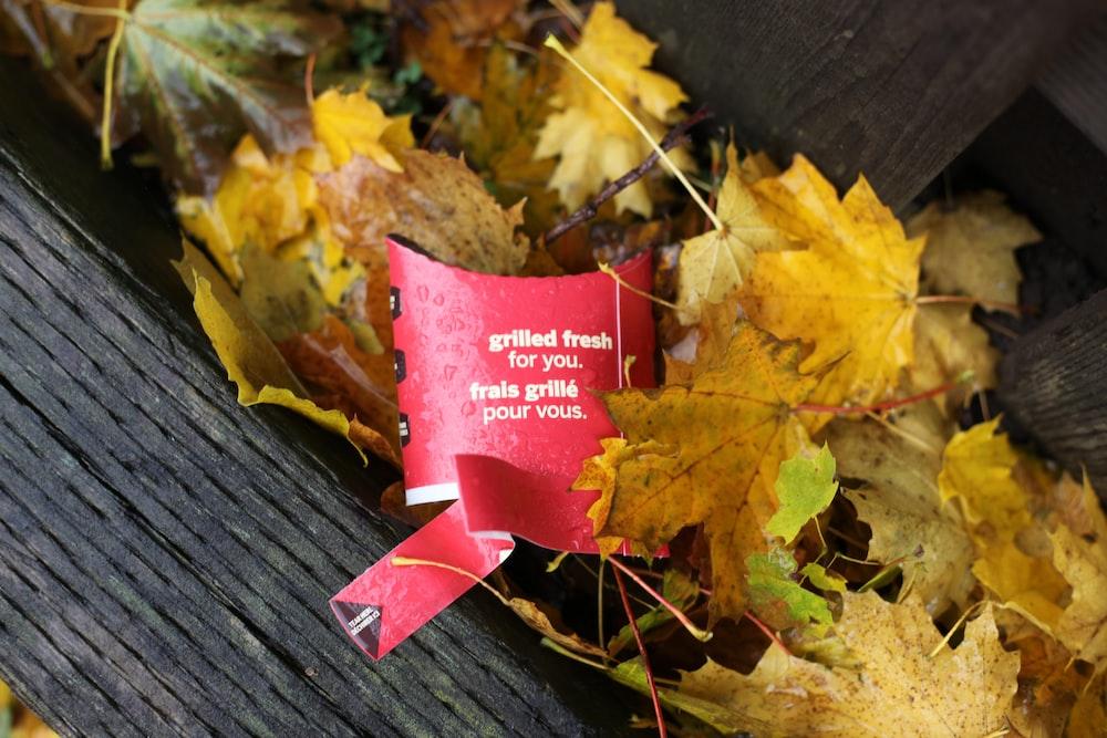 yellow maple leaf lot