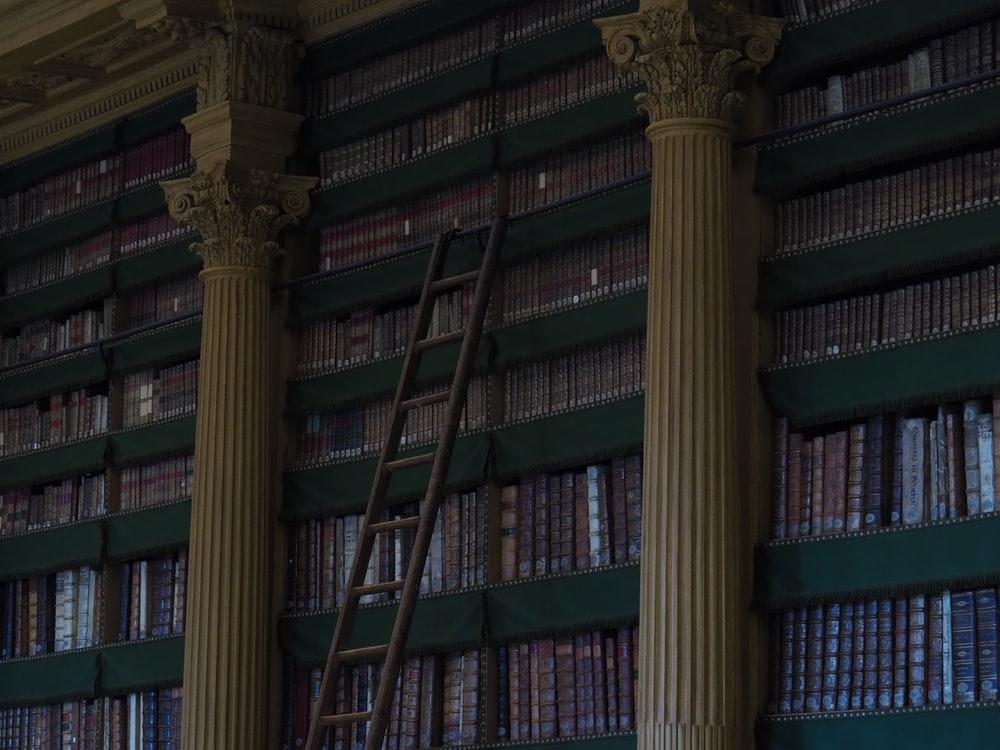 grey ladder on library