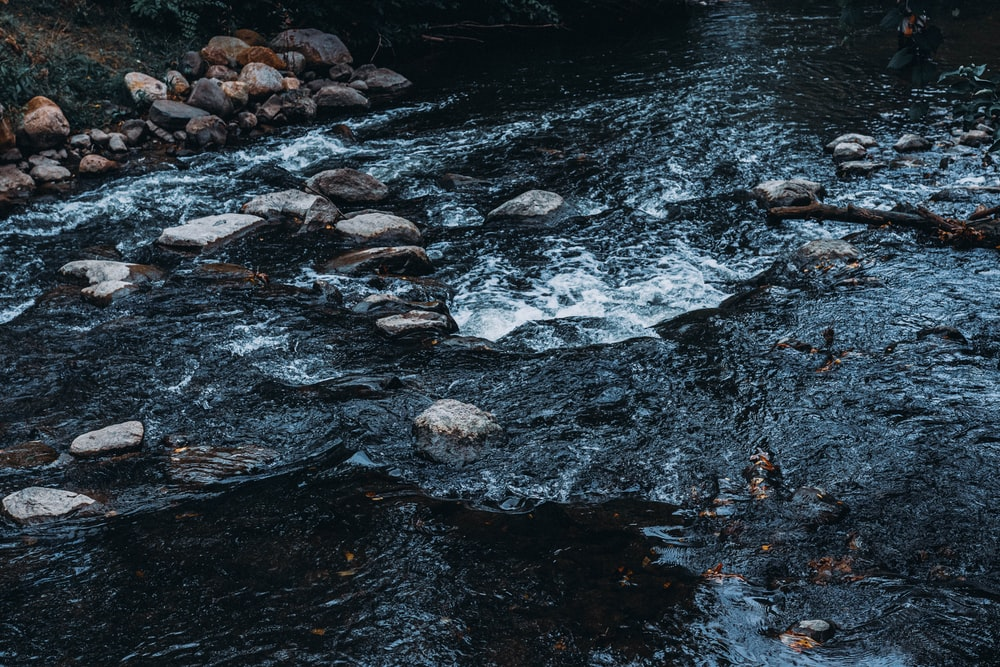 grayscale photo of river with stones