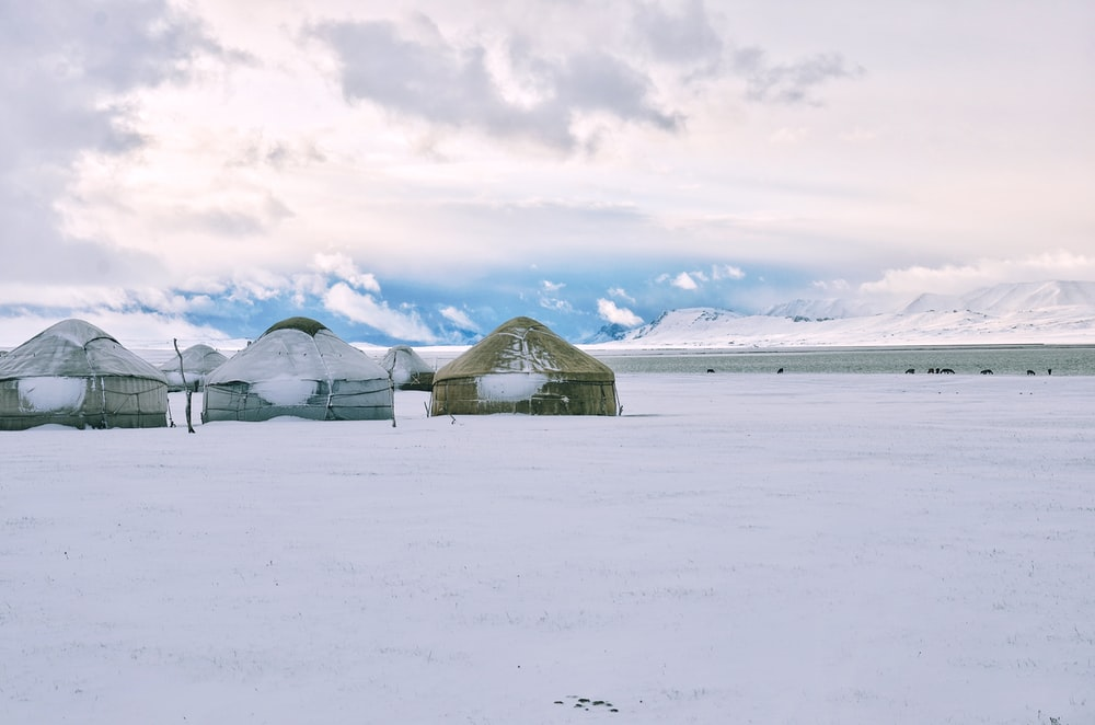 brown sheds surrounded by snow