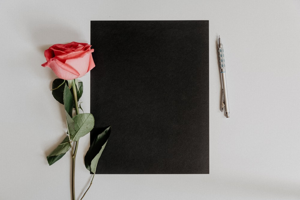 orange rose flower beside notebook and pen