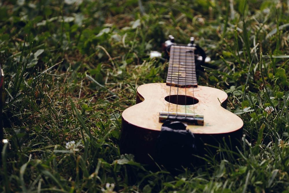 brown ukulele on grass