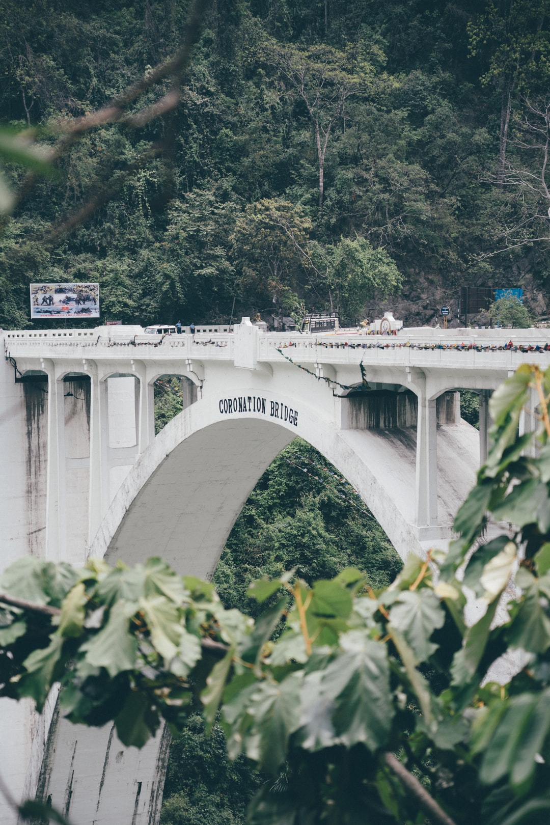 The Coronation Bridge, also known as the Sevoke Bridge, in Darjeeling district of West Bengal, India, spans across the Teesta River, connecting the districts of Darjeeling and Jalpaiguri.   Built in 1941 to commemorate the coronation of King George VI and Queen Elizabeth.   It's also called baghpool by the locals as the bridge as tigers on both its sides. A beautiful piece of colonial architecture.