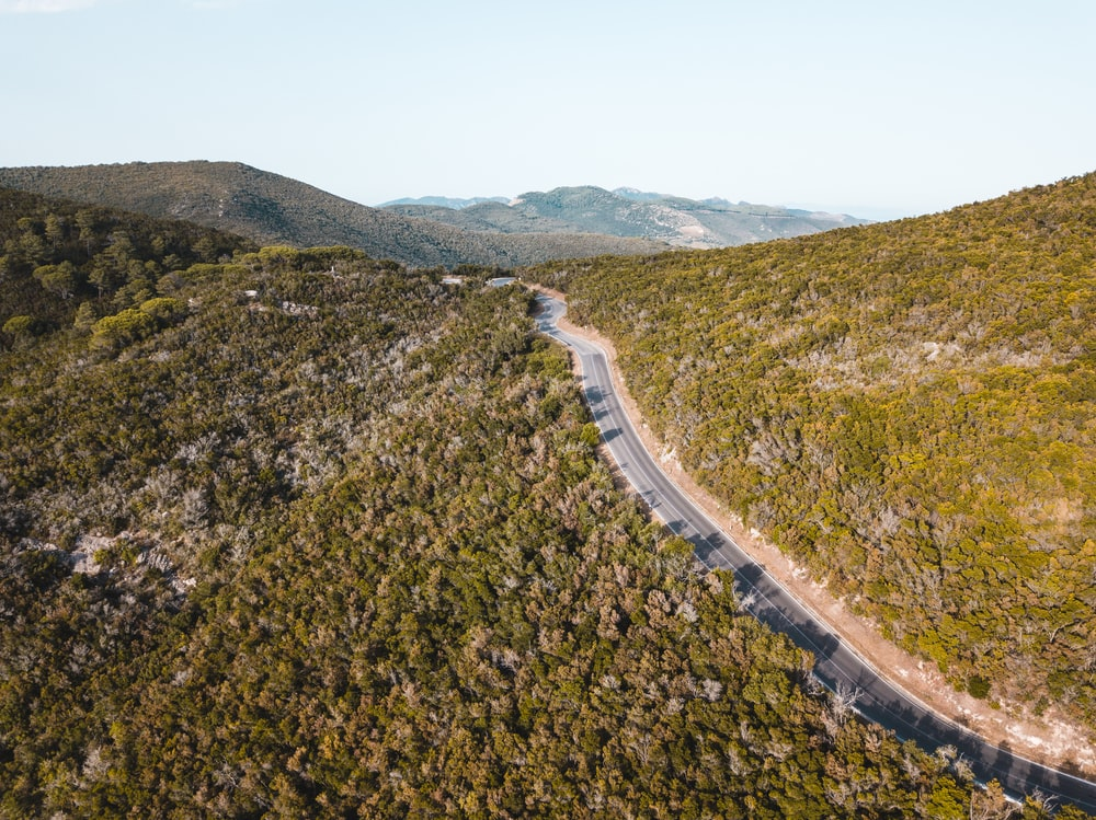 grey road between green grass field during daytimes