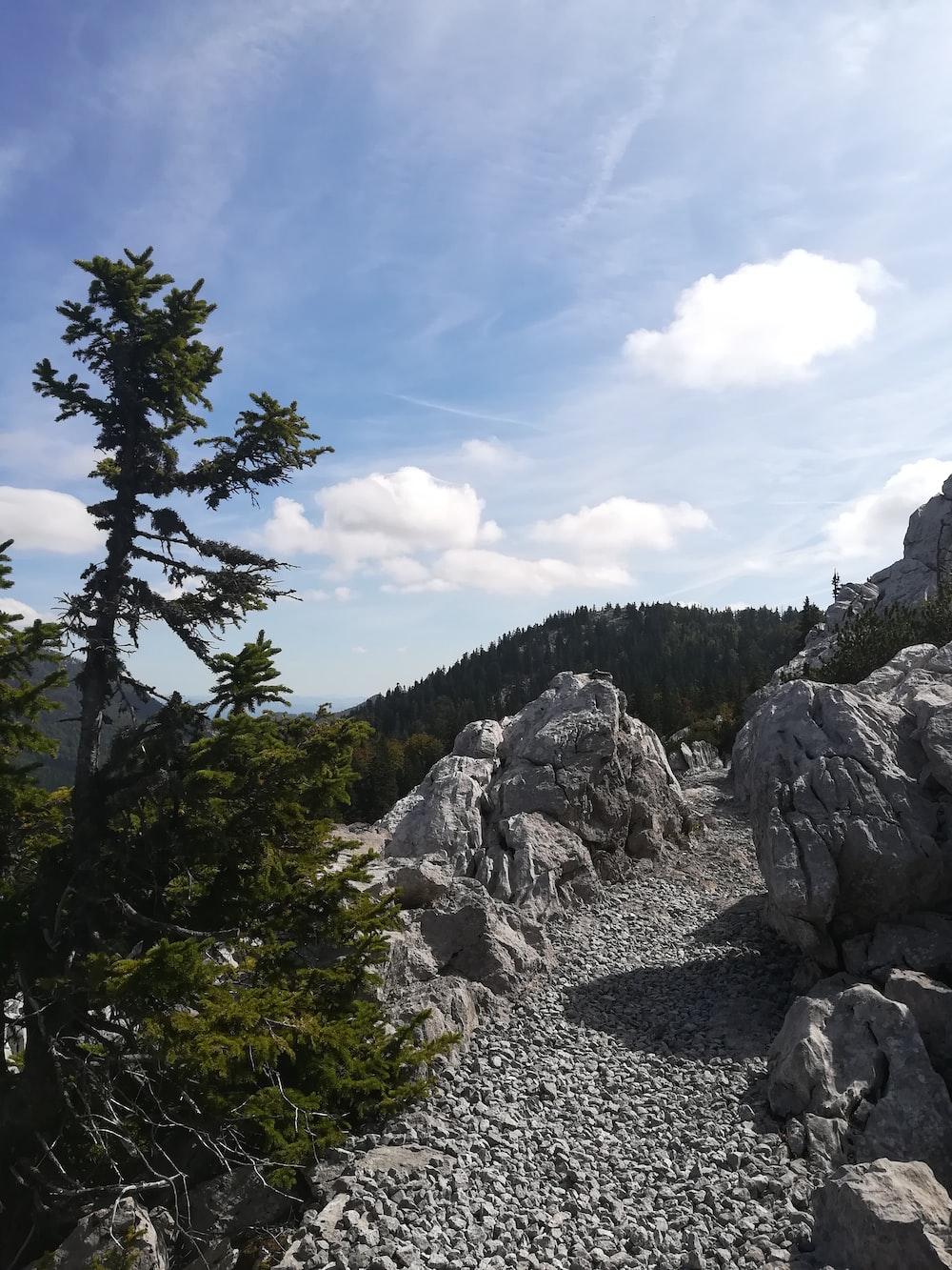 gray rocks under blue sky