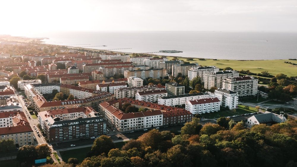 white and brown buildings