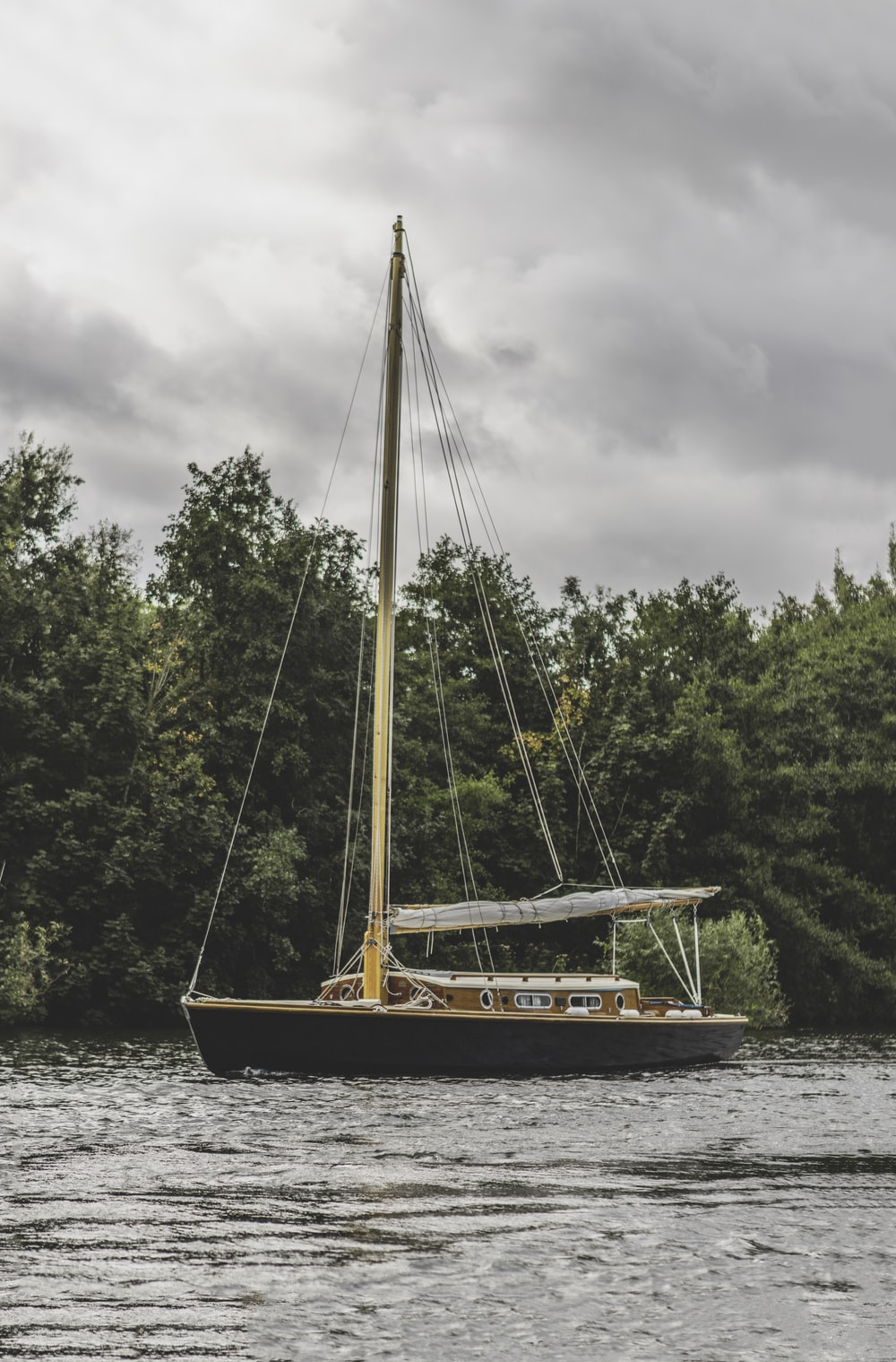 sailing boat beside tree