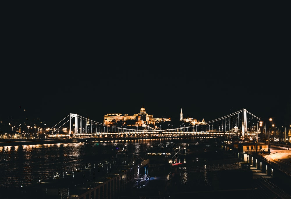 lighted bridge and buildings during nighttime