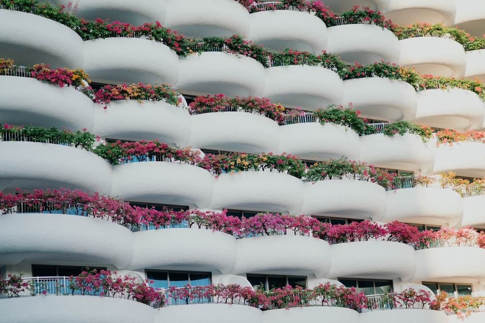 white building with balconies and plants