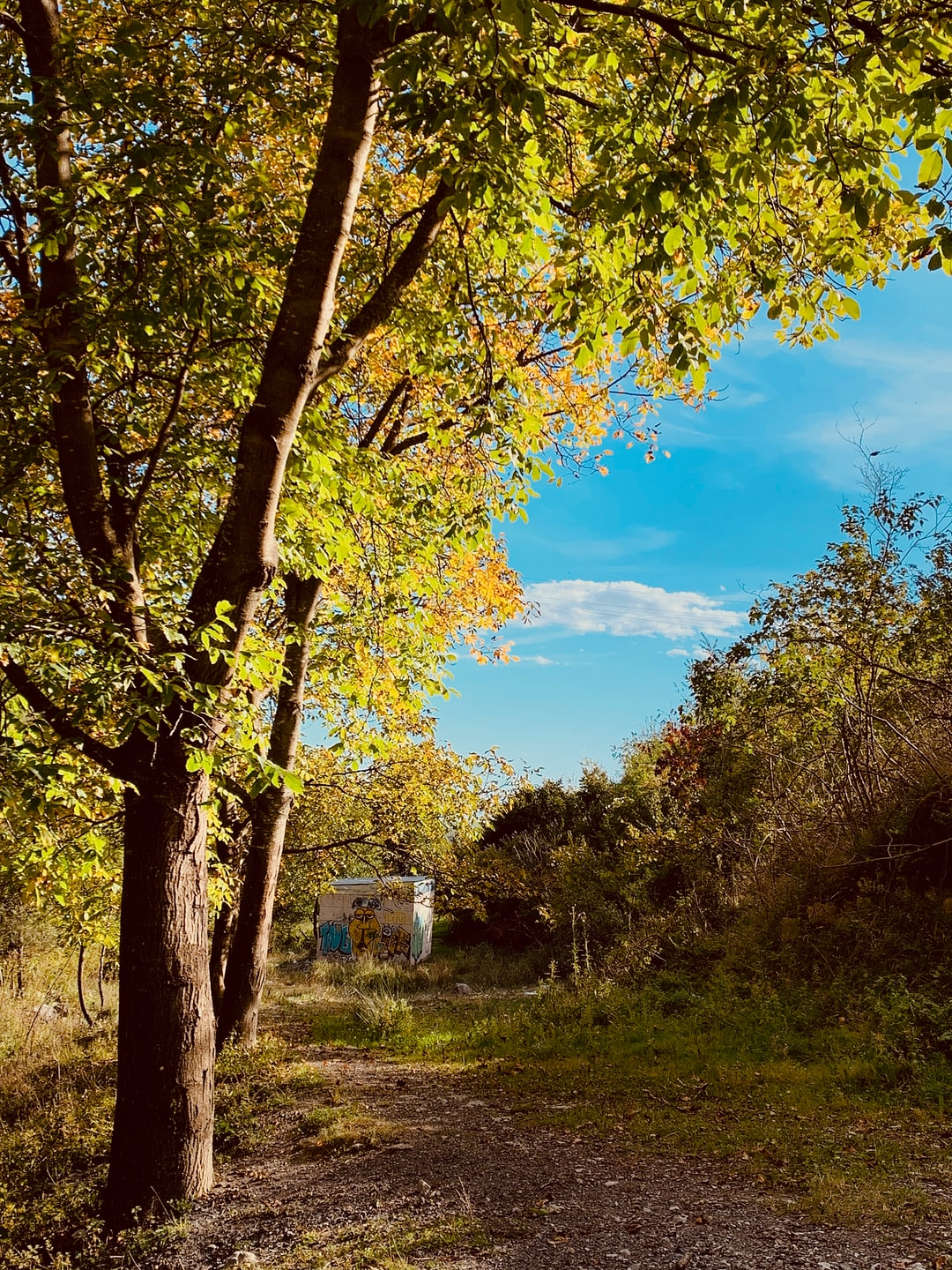 autumn is the time of picturesque tranquillity