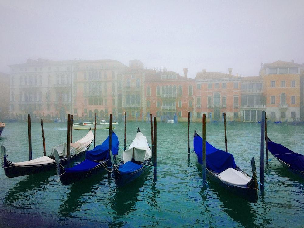 gondolas on body of water