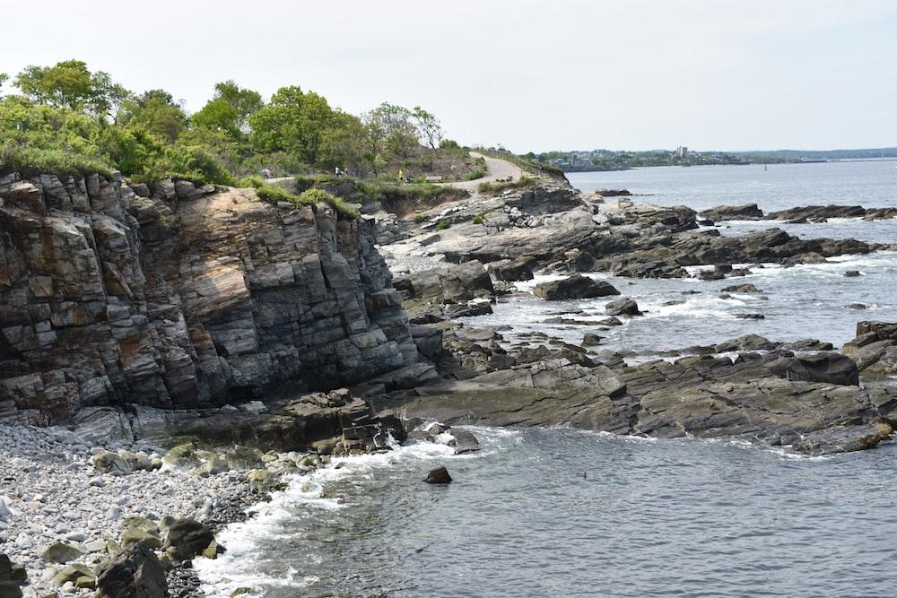 gray rocky island near green-leafed tree